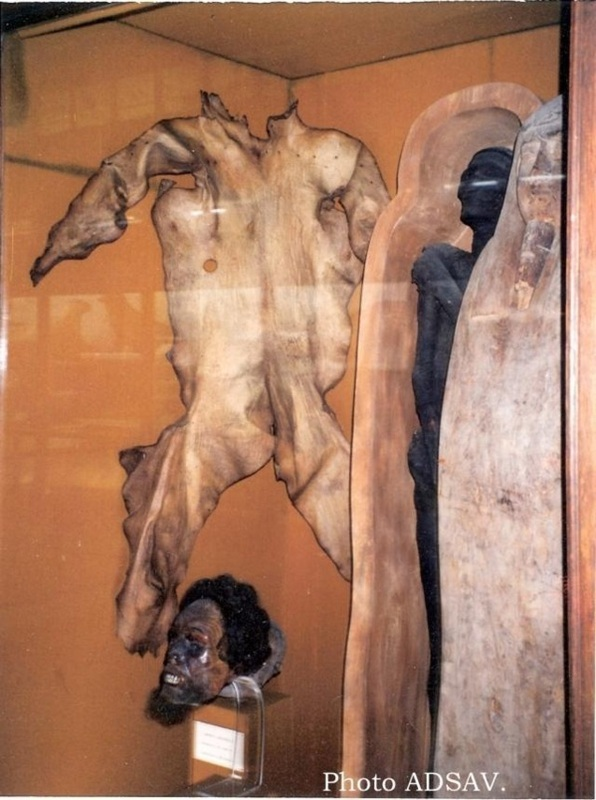 Au musée de Nantes
